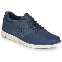 Lage Sneakers Timberland  BRADSTREET F/L OXFORD